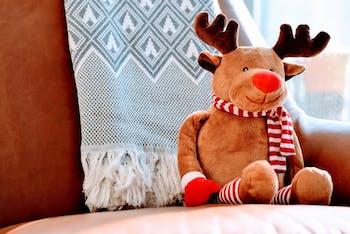 pexels-photo-reindeer